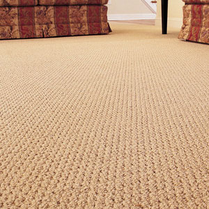 Staffordshire Cleaning Company - Carpet Cleaning